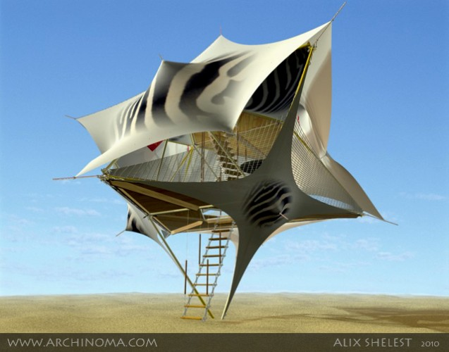Y-CARRIER : light aviation house